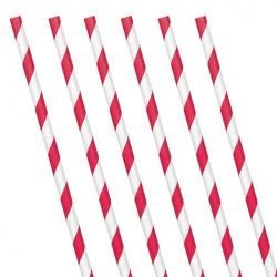 Apple Red Stripe Paper Straws (24 Pack)