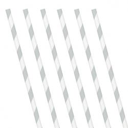Silver Stripe Paper Straws (24 Pack)